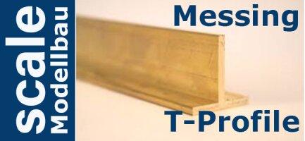 Ms T-Profile