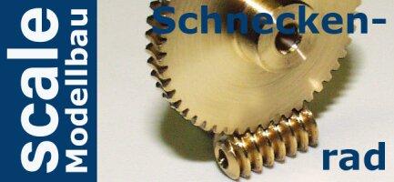 Schneckenrad